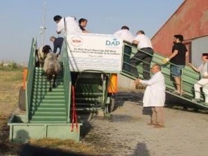 Van'da 'Mobil Koyun Banyoluğu' üretildi