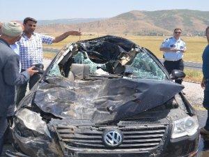 İneğe çarpan araçtaki 3 kişi yaralandı