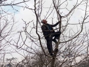 Din görevlileri yaşlıların tarlalarını sürüp ağaçlarını budadı