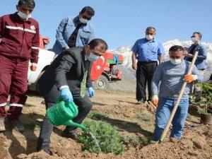 Sağlık çalışanları Vatan Tepesi'ne fidan dikti