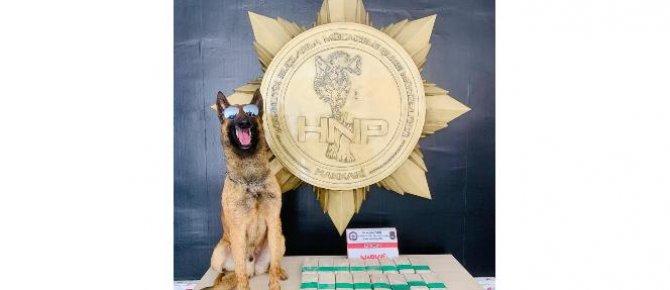 Yüksekova'da 12 kilo 300 gram uyuşturucu ele geçirildi