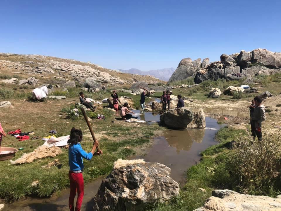 3500 Rakımlı Berçelan Yaylasında  Çocuklar Yün Yıkıyorlar