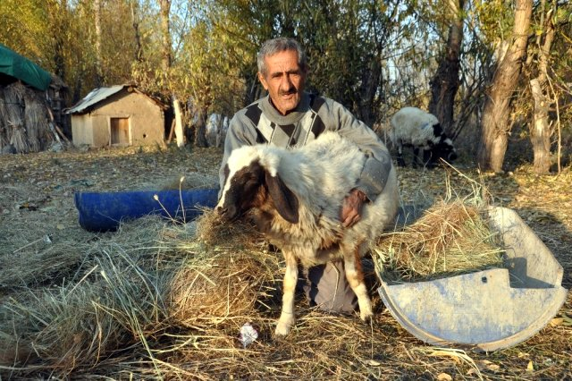 'Sarı Kız'ın sahibi Mehmet Emin Amca artık çok mutlu