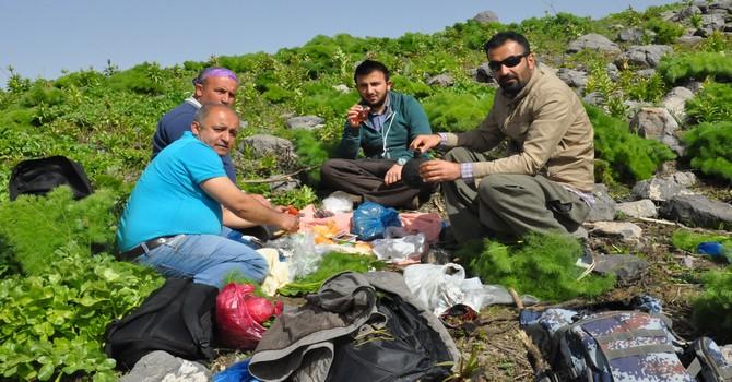 Bin 600 rakımlı karlı dağlarda piknik yaptılar!
