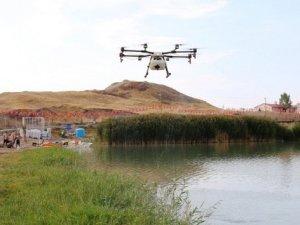Edremit'te drone ile ilaçlama çalışması
