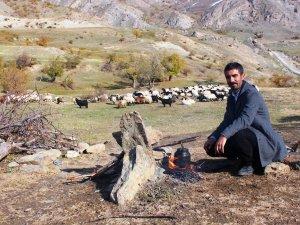 Hakkari Dağlarında Peygamberlik Mesleği Çobanlık
