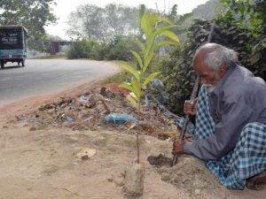 48 sene her gün bir tane ağaç dikti