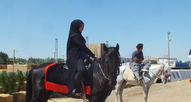 Atlarla, akrobasi gösterisi yapılacak