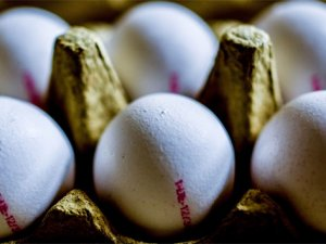 Ağustos'un zam şampiyonu yumurta oldu