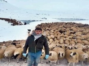 Çobanlar Kar Yağışına Hazırlıksız Yakalandı