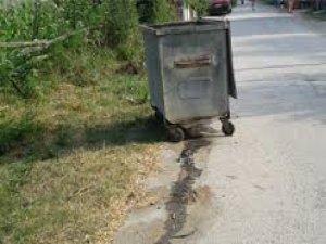 Mahallelinin Çöp Konteynırı Talebi