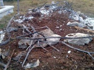 Aç kalan ayılar, mezarlara dadandı