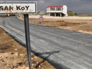 Suriye sınırındaki Karkamış'ta kuş gribi alarmı