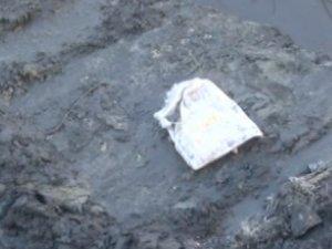 Esenyurt'ta derede yeni doğmuş bebek cesedi bulundu