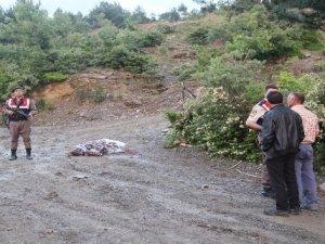 İftar vakti silahlara sarıldılar: 2 ölü, 4 yaralı