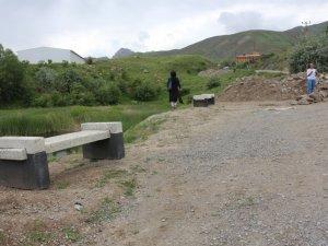 Belediye Doğa Katliamına Seyirci Kaldı