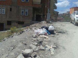 Toplanmayan Çöpler Mahalleliyi  İsyan Ettirdi