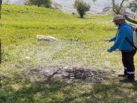 Hakkari'de keneyle mücadele çalışması